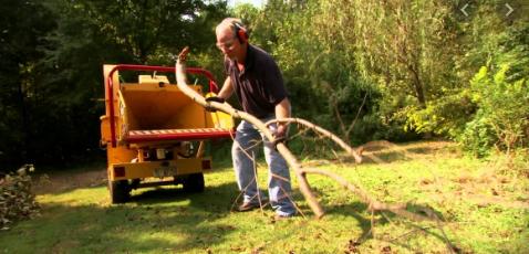 trituradora de ramas profesional